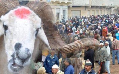 عيد الأضحى.. عادات وتقاليد وأفراح تزرع قيم التآزر والتكافل بين المغاربة
