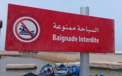 السباحة في الممنوع بميناء الصويرة +صور