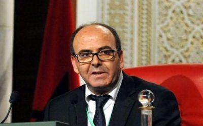 بنشماش يدعو إلى بلورة شراكة استراتيجية عربية إفريقية