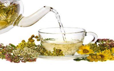 3 أعشاب طبيعية للتخلص من التهابات البول