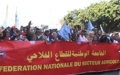 """FNSA تحتج ضد """"حكومة العثماني"""" و""""الباطرونا الزراعية"""""""