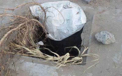 عااااجل . سقوط طفل في بالوعة للمياه بئر الرامي القنيطرة