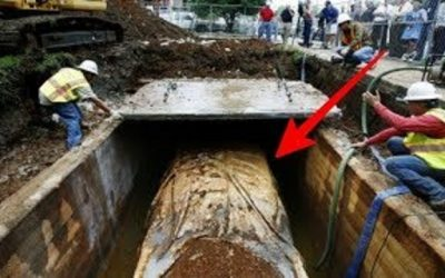 دفنت سيارة تحت الأرض منذ عام 1957م، لن تصدقوا كيف أصبحت هكذا!