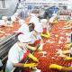 ارتفاع حجم صادرات المنتوجات الغذائية إلى 53,5 مليار درهم سنة 2017