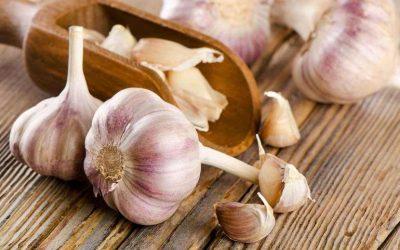 دراسة تكشف فوائد الثوم وأضراره