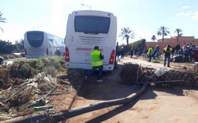 مراكش..إصابة اربعة اشخاص في حادث اصطدام حافلة لنقل الركاب بنخلة