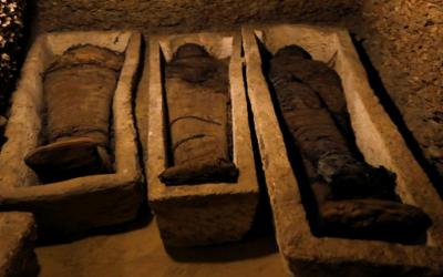 الكشف عن مقبرة تضم 50 مومياء بمصر