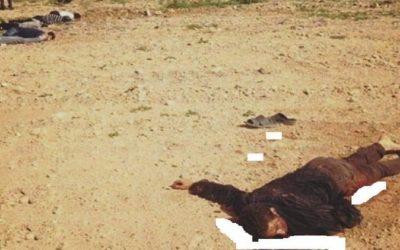 اعدام جماعي بمخيمات البوليساريو ومطالبة لفتح تحقيق دولي في النازلة
