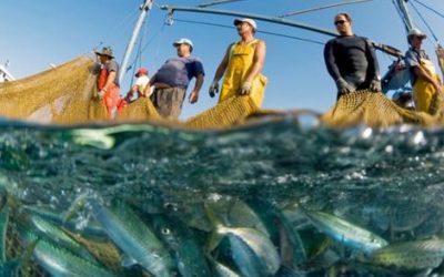 مجلس الاتحاد الأوروبي يصادق على القرار المتعلق بالتوقيع على اتفاق الصيد البحري