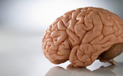 علماء يكتشفون مرضًا جديدًا يشبه الزهايمر