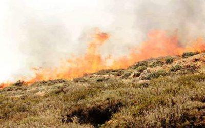 خطير..اندلاع حريق مهول بأعلى قمة بالأطلس الصغير + صورة