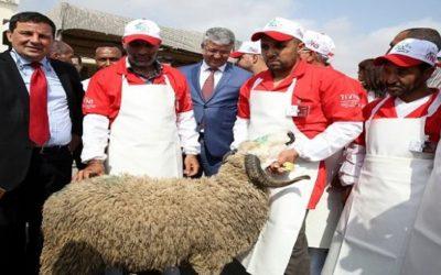 """وزارة أخنوش تطلق مبادرة توعوية """"الجزار ديالي"""" لتوعية الجزارين بمناسبة عيد الأضحى"""