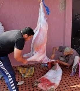 عملية الذبح  رحلة أخرى  تقض مضجع الكثيرين خلال يوم عيد الأضحى