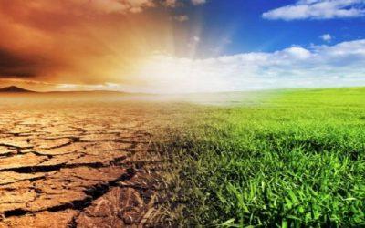 تدبير الساحل بالجهة الشرقية…مشروع مقاوم للتغيرات المناخية ومحدث لفرص الشغل