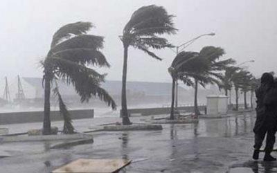 نشرة خاصة: زخات رعدية ورياح عاصفية في عدد من مناطق المملكة