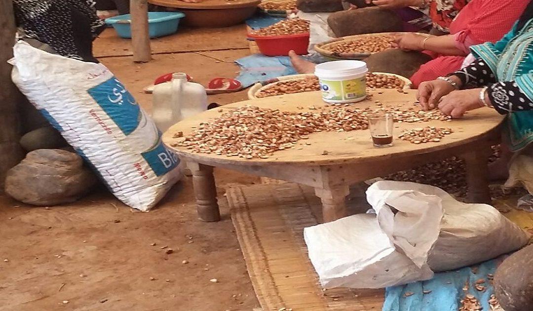 تعاونيات وشركات وجمعيات من جميع انحاء المغرب تتقدم بشكاية نصب وإحتيال ضد مركز لتفعيل المشاريع