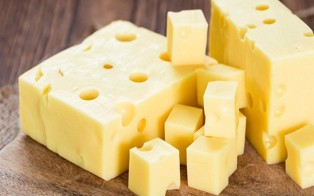 هذه فائدة الجبن على صحة الانسان