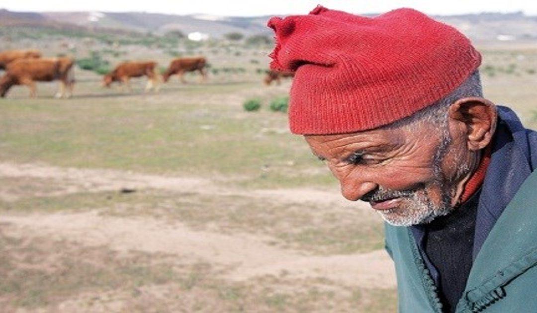 الجفاف يؤثر على النمو الإقتصادي للمغرب