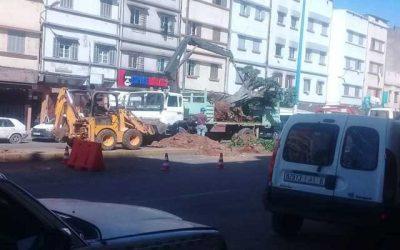 حسرة ساكنة مقاطعة سباتة بالدار البيضاء على اجتثاث أشجار شارع ادريس الحارثي
