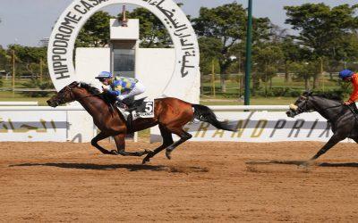 الدورة 5 للملتقى الدولي في سباقات الخيول بالدار البيضاء