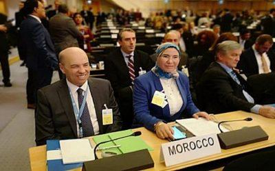الوفي: المغرب يواصل مساهمته في الجهود الجماعية لحماية اللاجئين ومساعدتهم