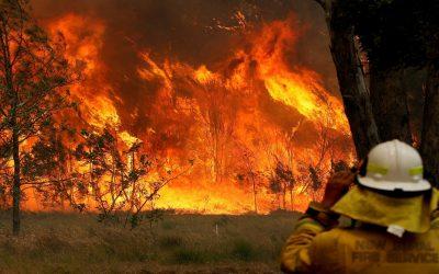 الدخان الكثيف يعطل جهود الإنقاذ من حرائق الغابات في أستراليا