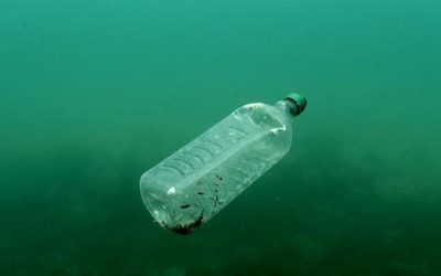 صــادم..الانسان يتناول كمية مهمة من البلاستيك أسبوعيا