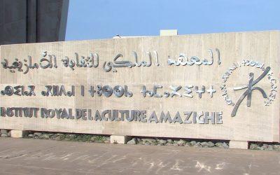 البرلمان ينهي وجود المعهد الملكي للثقافة الأمازيغية ومعهد التعريب
