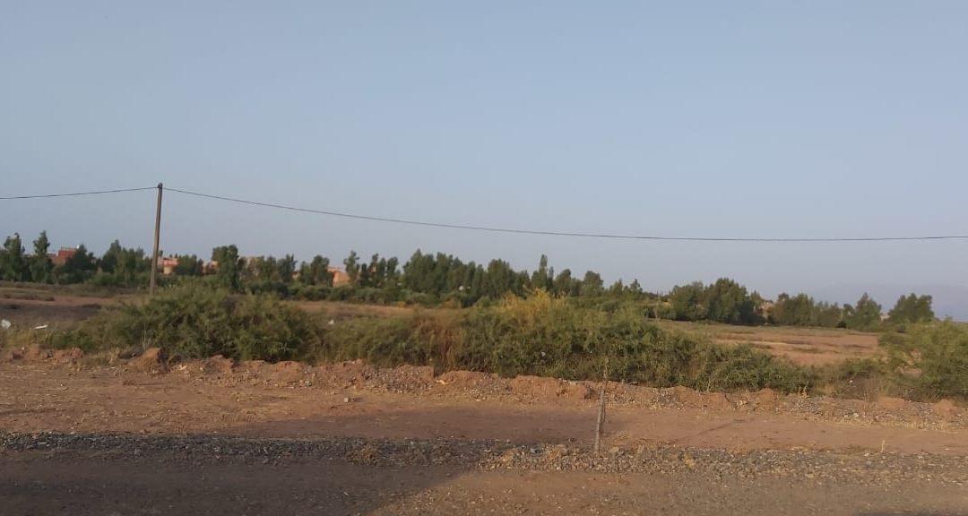 فعاليات تطالب بمعاقبة مافيا العقار بجماعة اغواطيم إقليم الحوز