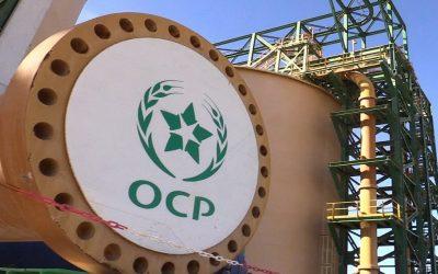 OCP تفكر في تعليق مبيعات الأسمدة إلى امريكا