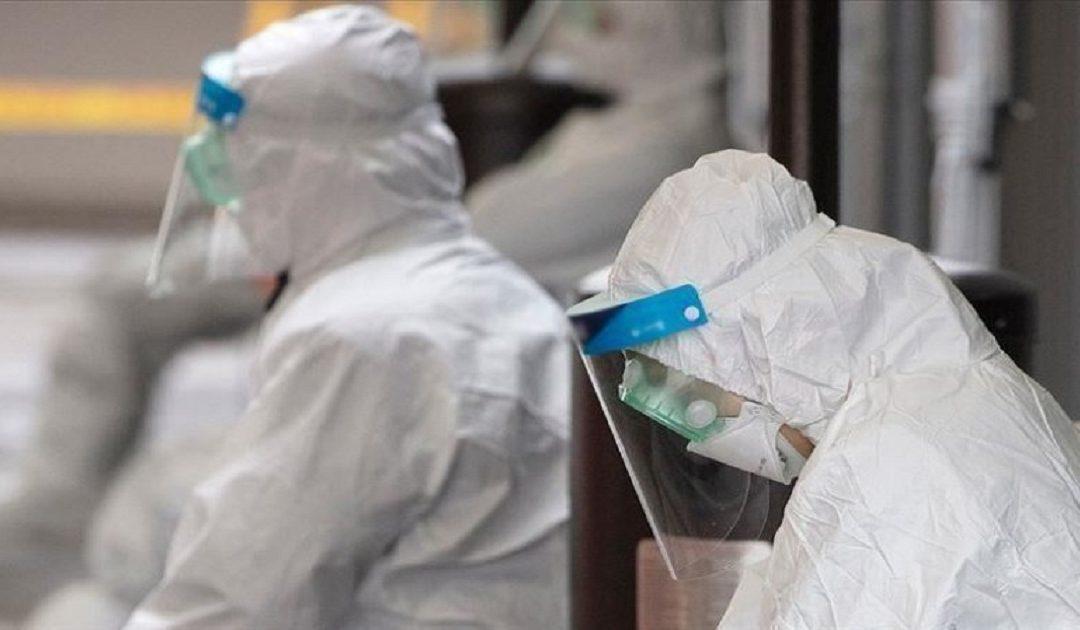 اكتشاف تسع حالات لفيروس كورونا بالجهات الجنوبية الثلاثة للمملكة