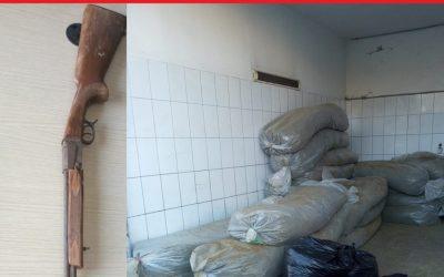 """مصالح الأمن تحجز أزيد من 4 أطنان من """"الكيف"""" وبندقية للصيد وصفائح مزورة للسيارات ضواحي وزان"""