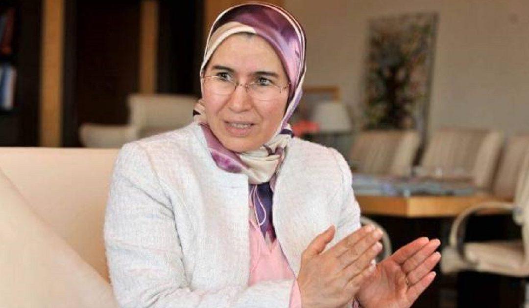 الوفي: برنامج تعبئة الكفاءات المغربية بالخارج سيمكن من تعبئة 10 آلاف كفاءة في أفق 2030