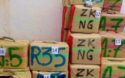 تفكيك شبكة إجرامية تنشط في التهريب الدولي للمخدرات بطنجة وتوقيف 11 شخصا بينهم أجنبيان